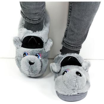 Topánky Ženy Papuče Seastar Dámske sivé papuče KAYLA sivá