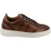 Topánky Muži Nízke tenisky Calce  Marrón