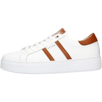 Topánky Muži Nízke tenisky Exton 861 Leather