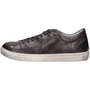 Topánky Muži Nízke tenisky NeroGiardini A705370U GREY