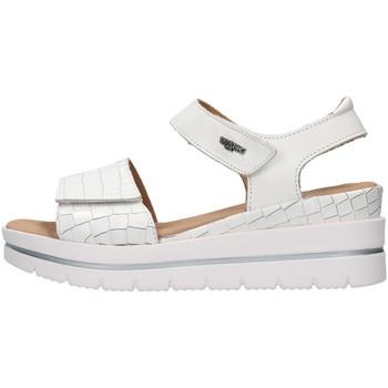 Topánky Ženy Sandále Melluso 036012 WHITE