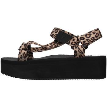 Topánky Ženy Sandále Windsor Smith POPPED BROWN