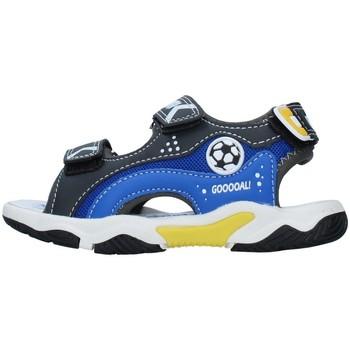 Topánky Chlapci Športové sandále Primigi 7460700 BLACK