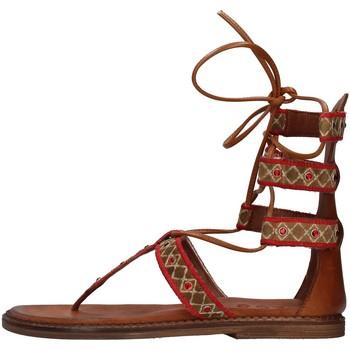 Topánky Ženy Sandále Zoe INCAS05 BROWN