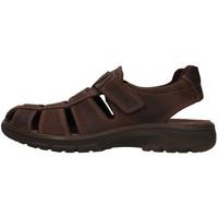 Topánky Muži Sandále Enval 7219111 BROWN