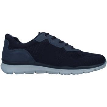 Topánky Muži Nízke tenisky Enval 7218211 BLUE