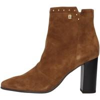 Topánky Ženy Čižmičky NeroGiardini I013631DE BROWN