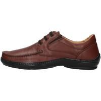 Topánky Muži Derbie Melluso U47038L BROWN