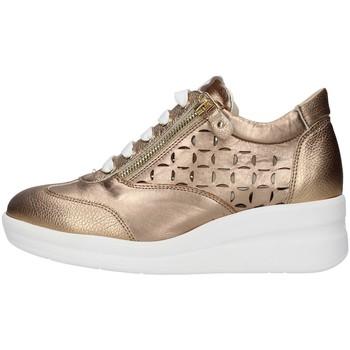 Topánky Ženy Nízke tenisky Melluso R20228 GOLD