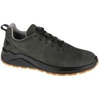 Topánky Muži Nízke tenisky 4F OBML251 Olivová