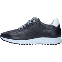 Topánky Muži Nízke tenisky Melluso U16233A BLUE
