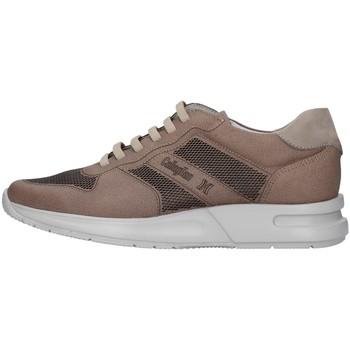 Topánky Muži Nízke tenisky CallagHan 91314 BEIGE