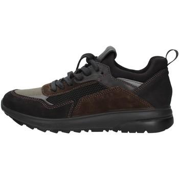 Topánky Muži Nízke tenisky IgI&CO 6139000 BLACK