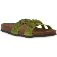 Topánky Ženy Šľapky Bioline 233 ALOHE INGRASSATO Verde