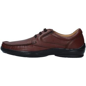 Topánky Muži Derbie Melluso U47038A BROWN