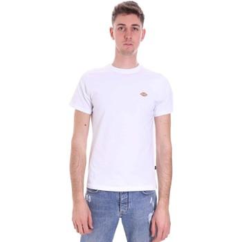 Oblečenie Muži Tričká s krátkym rukávom Dickies DK0A4XDAWHX1 Biely