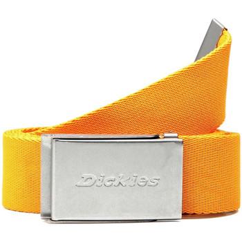 Textilné doplnky Opasky Dickies DK0A4XBYB591 žltá