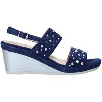 Topánky Ženy Sandále Melluso HR70531 Modrá