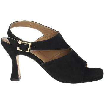 Topánky Ženy Sandále Paola Ferri D7437 Black