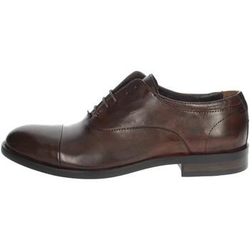 Topánky Muži Mokasíny Payo 1236 Brown leather