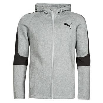 Oblečenie Muži Mikiny Puma EVOSTRIPE CORE FZ HOODIE Šedá / Čierna
