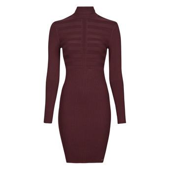 Oblečenie Ženy Krátke šaty Morgan RMENTO Bordová