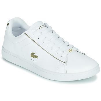 Topánky Ženy Nízke tenisky Lacoste CARNABY EVO 0721 3 SFA Biela