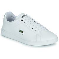Topánky Muži Nízke tenisky Lacoste CARNABY BL21 1 SMA Biela