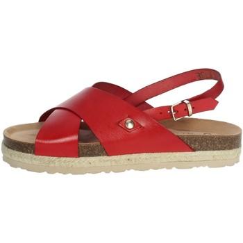 Topánky Ženy Sandále Yokono JAVA-153 Red