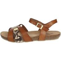 Topánky Ženy Sandále Yokono IBIZA-153 Brown leather