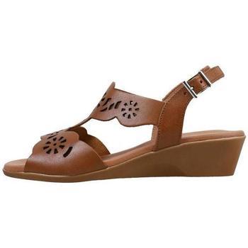 Topánky Ženy Sandále Amanda  Hnedá