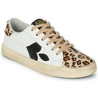 Topánky Ženy Nízke tenisky Le Temps des Cerises AUSTIN Biela / Leopard