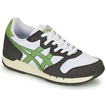 Topánky Nízke tenisky Onitsuka Tiger ALVARADO Zelená / Čierna / Biela