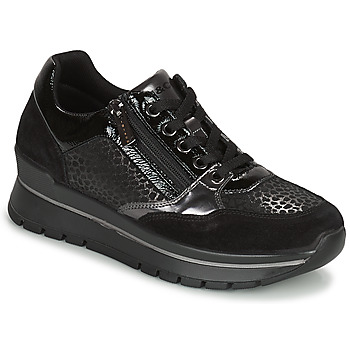 Topánky Ženy Nízke tenisky IgI&CO DONNA ANISIA Čierna