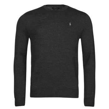 Oblečenie Muži Svetre Polo Ralph Lauren AMIRAL Šedá