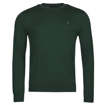 Oblečenie Muži Svetre Polo Ralph Lauren AMIRAL Zelená