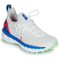 Topánky Muži Bežecká a trailová obuv Mizuno WAVE SKY NEO Biela