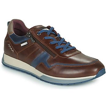 Topánky Muži Nízke tenisky Pikolinos CAMBIL Hnedá / Modrá