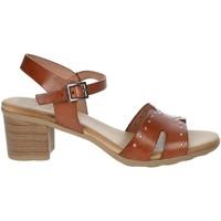 Topánky Ženy Sandále Porronet FI2626 Brown leather