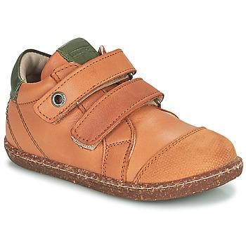 Topánky Chlapci Členkové tenisky Aster WASHAN Ťavia hnedá / Zelená