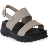 Topánky Ženy Sandále Frau TAUPE CLUD Marrone