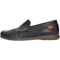 Topánky Muži Mokasíny Luisetti 33901NA Blue