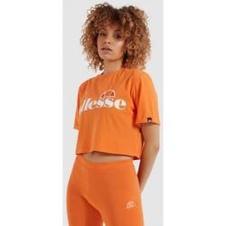 Oblečenie Ženy Košele a blúzky Ellesse CAMISETA MANGA CORTA MUJER  SGI04484 Oranžová