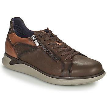 Topánky Muži Nízke tenisky Fluchos COOPER Hnedá