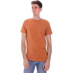 Oblečenie Muži Tričká s krátkym rukávom Fila 688567 Oranžová