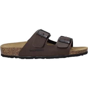 Topánky Muži Šľapky Valleverde G51800P Hnedá
