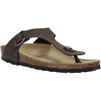Topánky Muži Žabky Valleverde G51830 Ostatné