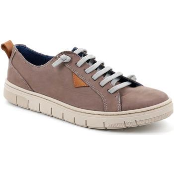 Topánky Muži Nízke tenisky Grunland SC5190 Hnedá