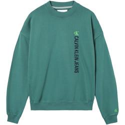 Oblečenie Muži Mikiny Calvin Klein Jeans J30J317062 Zelená