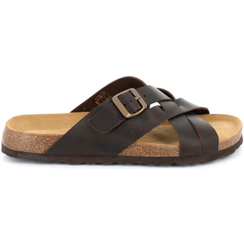 Topánky Muži Šľapky Grunland CB2635 Hnedá